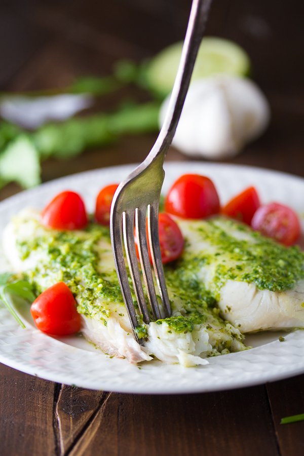 Cilantro-Chile-Pesto-Fish-4